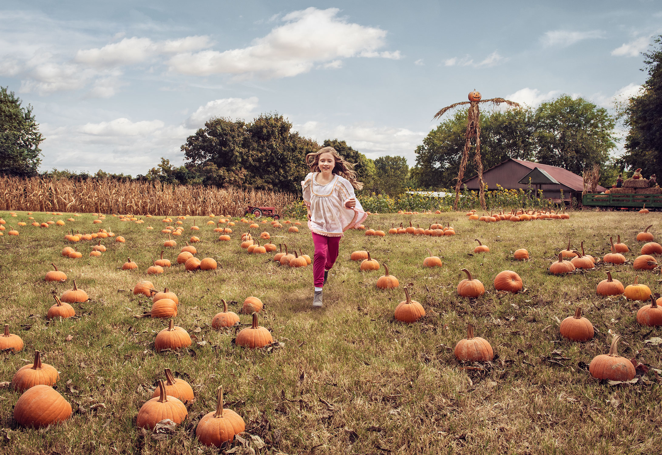 PumpkinPatch2Web